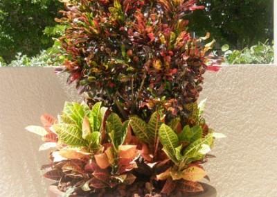 custom-designed-planter-pots